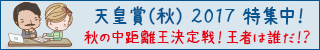 天皇賞(秋)